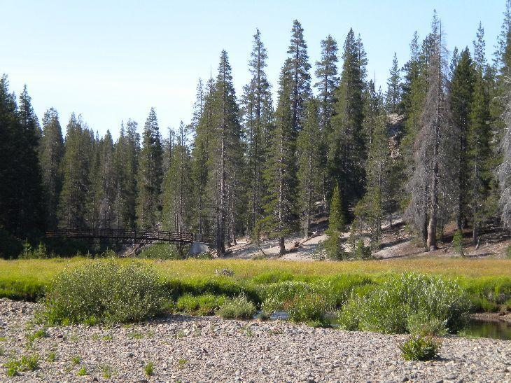 Meadow Above Postpile