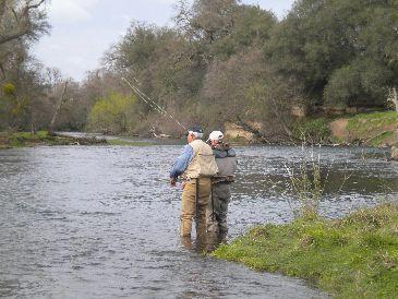 Mokelumne river trip report 3 8 10 for Mokelumne river fishing