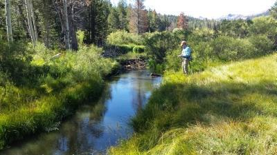 red-lake-creek-8-15-14-3-small