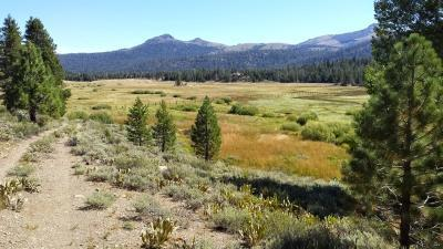 red-lake-creek-8-15-14-4-small